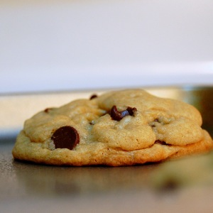 Chocolate Chip Cookie Close Up